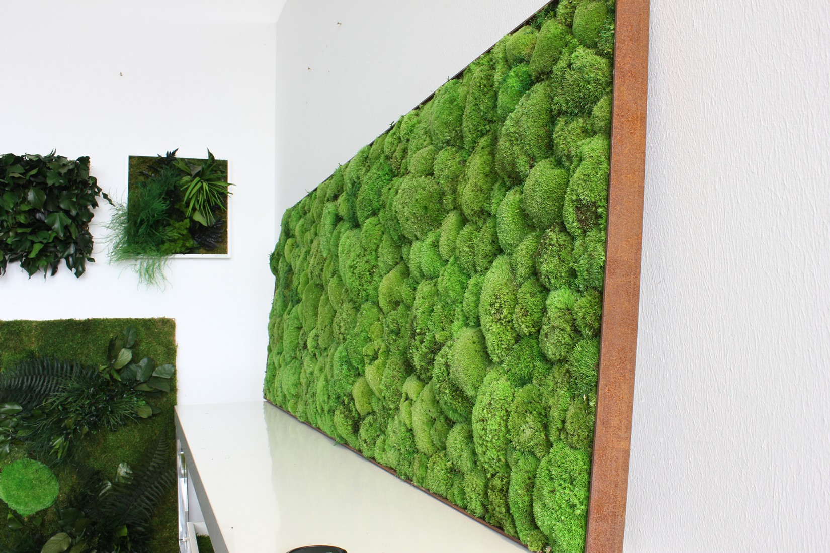 wandbegr nung indoor fassade pflanzen beet. Black Bedroom Furniture Sets. Home Design Ideas