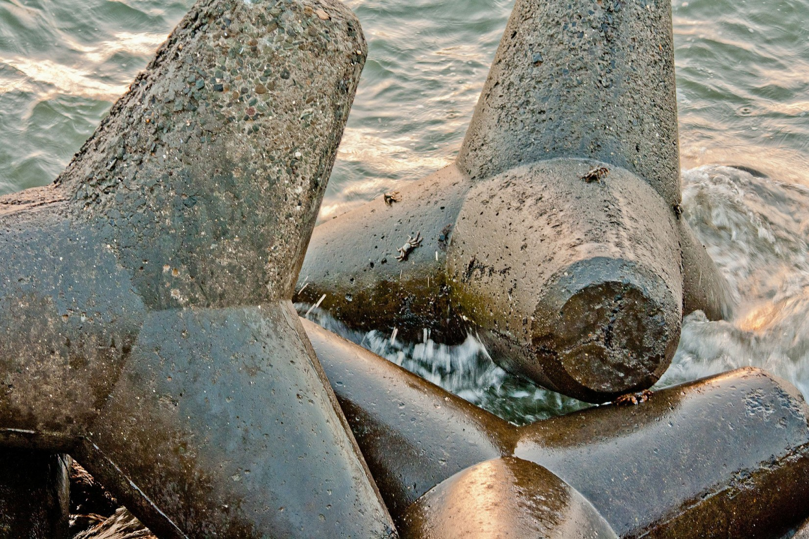 Kieselsäurehaltige Zuschläge und ständiger Wasserkontakt begünstigen die Alkalireaktion.