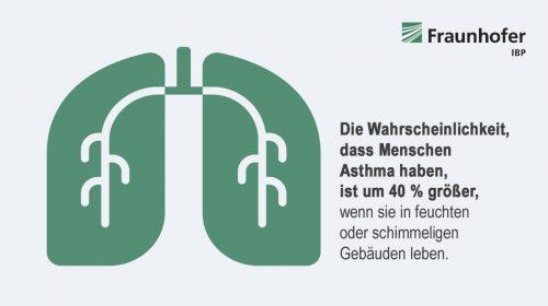 Die Studie beziffert das gesundheitliche Risiko, das von schimmelbelasteten Räumen ausgeht. Grafik: Fraunhofer IBP