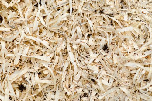 Die verarbeiteten Späne sind meist nur 0,1 bis 0,3 mm dick. Foto: Pixabay