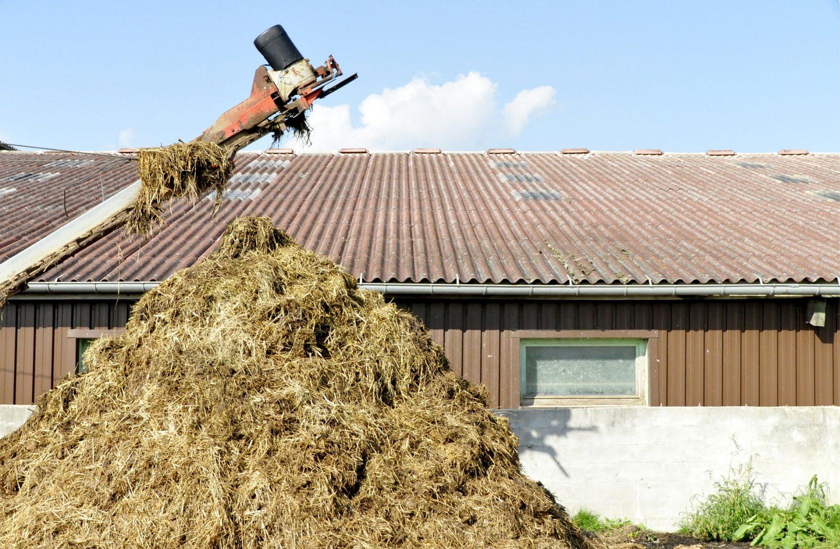 Wellplatten sieht man häufig auf großen Dachflächen in der Landwirtschaft. Foto: Pixabay