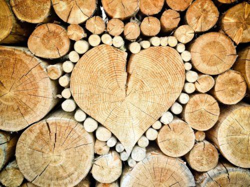 Lignin wird aus Holz und verholzten Pflanzen wie Stroh gewonnen. Foto: Pixabay