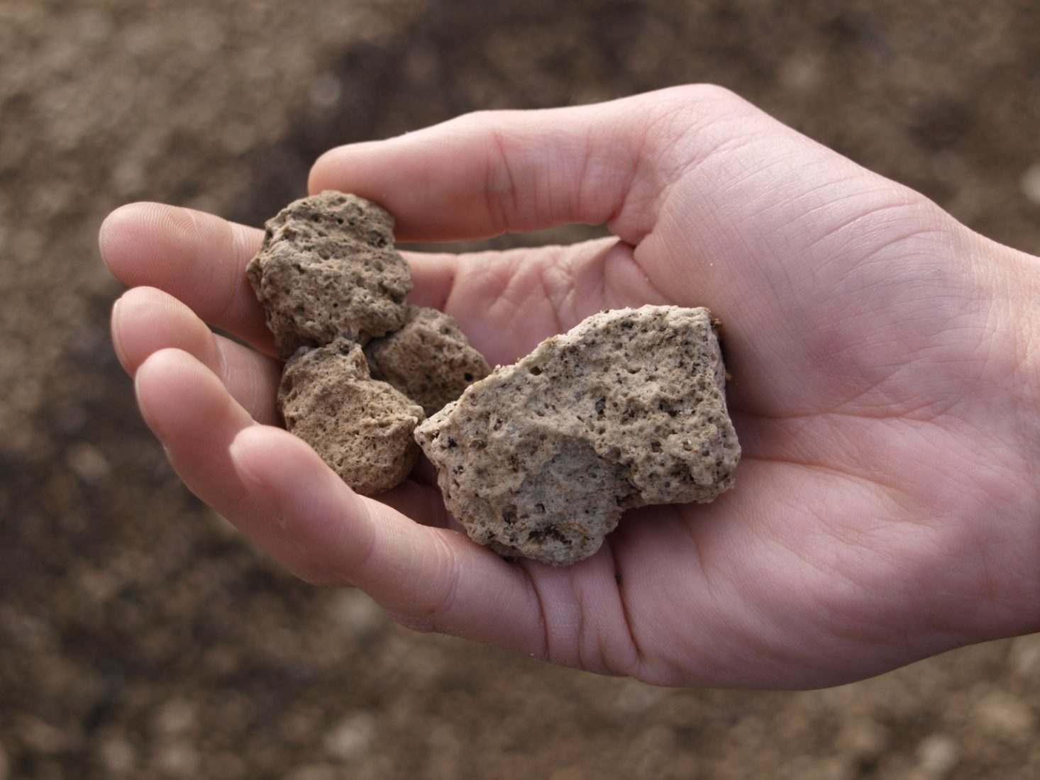 Naturbims besteht bis zu 85 % aus Luftporen. Fotos: Bundesverband Leichtbeton e.V.