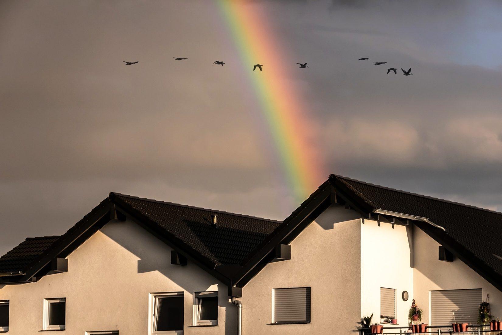 Welche Auswirkungen haben beregnete Fassaden-Baustoffe auf die Umwelt? Foto: Pixabay