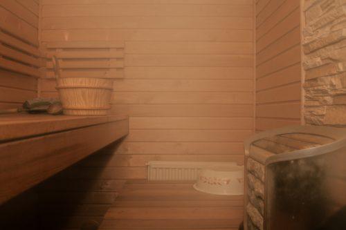Wasserdampf in der Sauna: Der Dampfdiffusionswiderstand (μ-Wert) für Holz beträgt etwa 50. Foto: Pixabay
